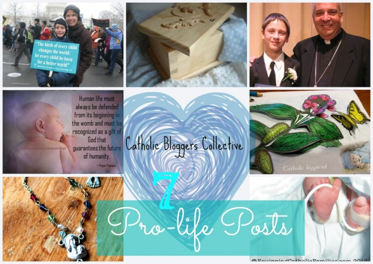 prolife collage