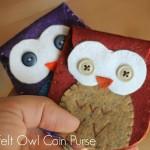 Felt Owl Coin Purse Beauty