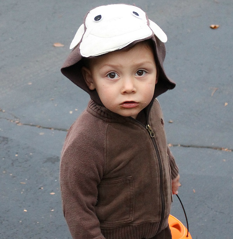 curious george costume 2