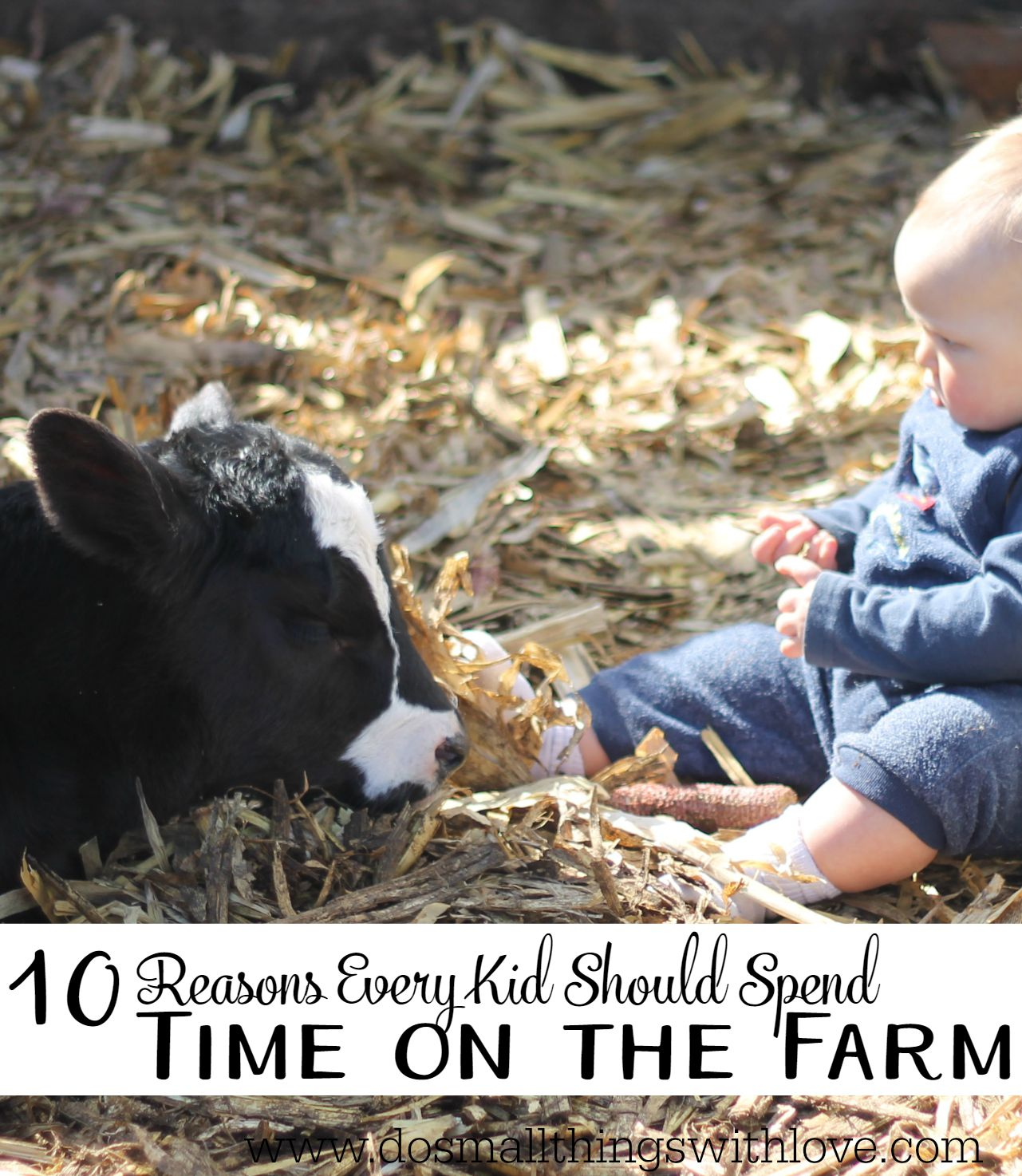 10 reasons every kid should spend some time on the farm