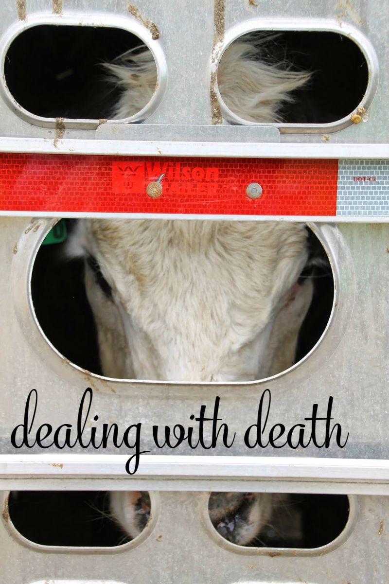 7 dealing with death on the farm