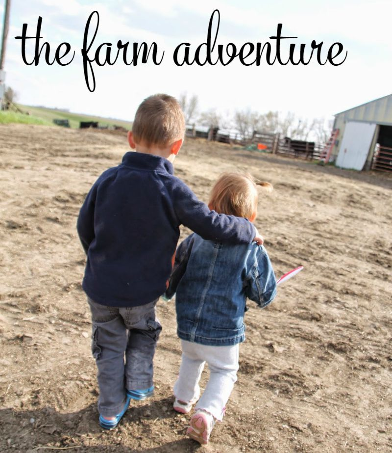 9 the farm adventure