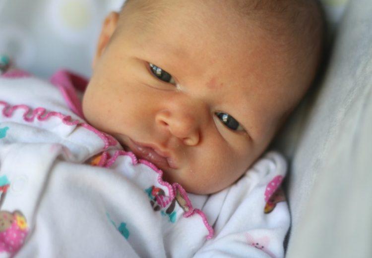 Josephine 2 weeks