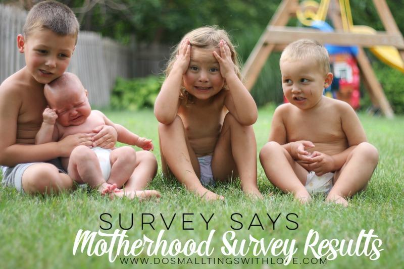 Motherhood Survey Results DSTWL
